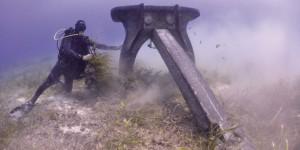 Procés de llaurat generat per les àncores de les embarcacions que fondegen a damunt les praderies de posidònia. Foto denúncia d'Oceana.